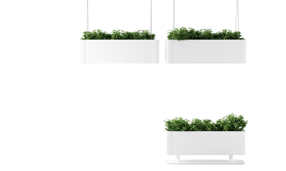 Green Light. Diseño de lámparas que emiten vegetación